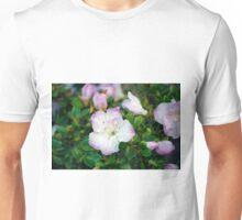 Longwood Gardens - Spring Series 62 Unisex T-Shirt