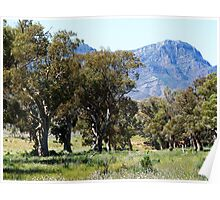The Purple Beauty of the Flinders Ranges South Australia Poster