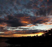 Sydney City Sunset by Nick Wilsher