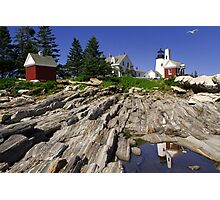 Seagull Soaring Past Pemaquid Point Light Photographic Print