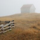 August mist building fence by TerrillWelch