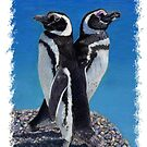 Adorable Penguin Greeting Card by Patricia Barmatz