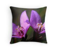 Boronia falcifolia  Throw Pillow