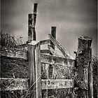 Zig Zag Fence by Nigel Jones