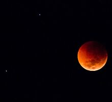 Total Lunar Eclipse by Jason Asher