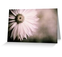 Fading away - Everlasting flower Greeting Card