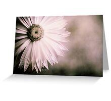 Fading away - Everlasting flower Greeting Card