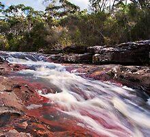 McCarrs Creek by Jason Ruth