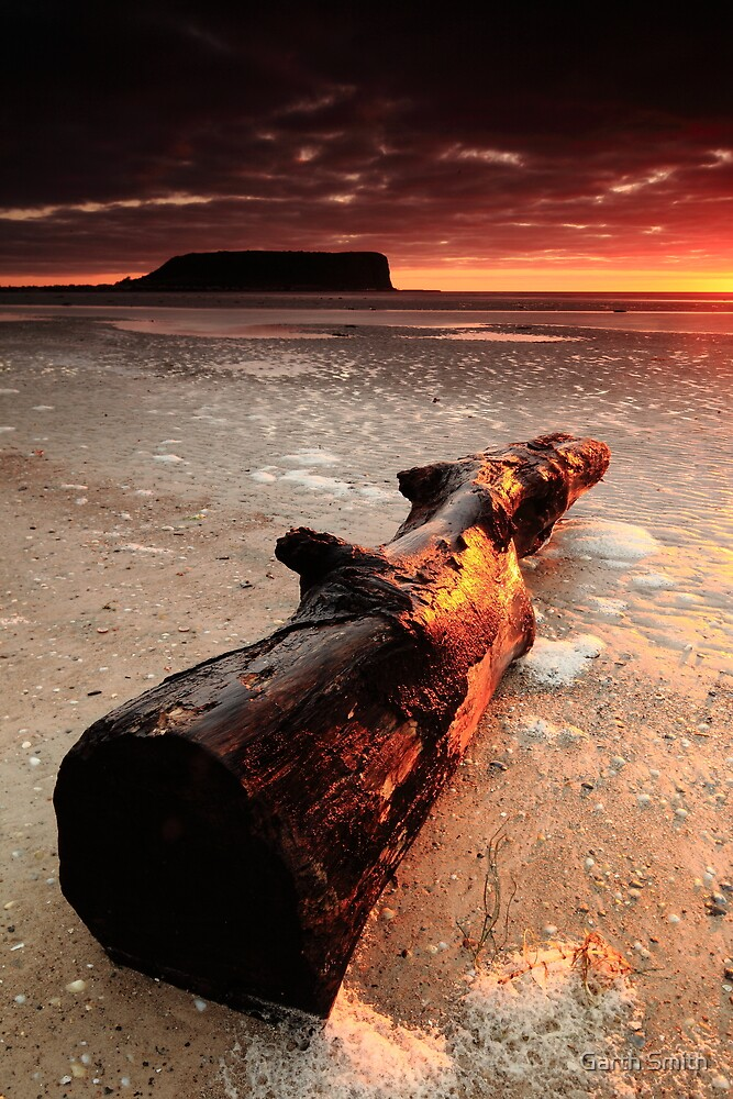 Washed Up by Garth Smith