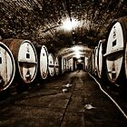 the Cellar by Lisa  Kenny