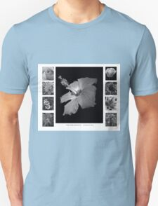 Pretty Petals II Black and White T-Shirt