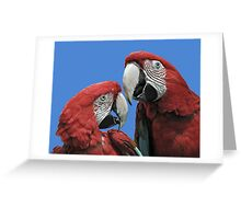 Red Parrots Greeting Card