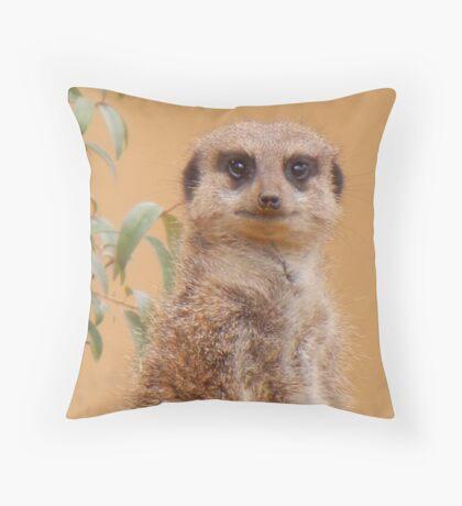 im keeping my beady eye on you! Throw Pillow