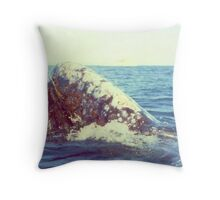 Sheila Meets The Whale Throw Pillow