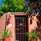 Santa Fe Door - Acequia Madre by Mitchell Tillison