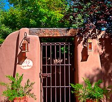 Santa Fe Door - Acequia Madre by Mitchell Tillison