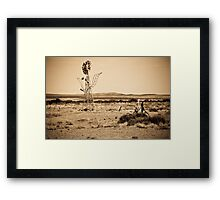 Mutonia Sculptures, Alberrie Creek - South Australia Framed Print