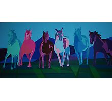 Mustangs of the Western Part of the USA lll Photographic Print