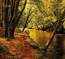 Path by the River Coe by jacqi