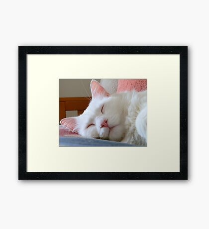 See Me In Shadows (Afternoon nap) Framed Print