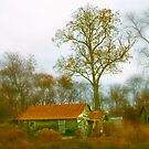 Sharecropper's Home II by JMontrell