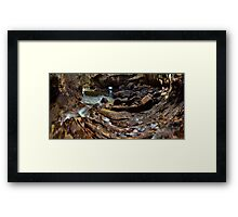 Whiritoa Blow Hole Cave Framed Print