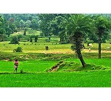 Incredible India-3/2011 Photographic Print