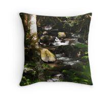 Little Falls On The Clackamas Throw Pillow