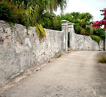 Old Bermuda Lane by triciamary