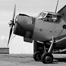 Antonov An-2 biplane by RedSteve