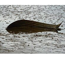 Beached!! Photographic Print