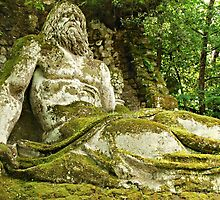 Neptune in the Woods-Parco dei Mostri, Italy by Deborah Downes