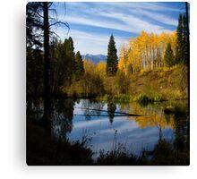 Beaver Pond Reflections Canvas Print