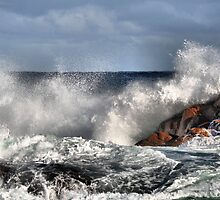 Splash - Canal Rocks Western Australia by Bev Woodman