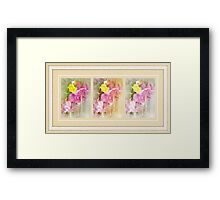 Fuchsia Fairies Framed Print