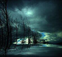 After the Storm ! by Elfriede Fulda
