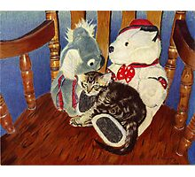 Rocking With Friends - Kitten resting with her stuffed animals Photographic Print