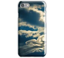 Eco Friendly  /  8 iPhone Case/Skin