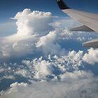 Flying high. by Suelynn