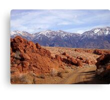 Red,White And Blue Of Rural America Canvas Print