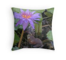 Kissing up to bullfrogs Throw Pillow
