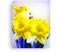 Daffodils blue yellow watercolor  Canvas Print