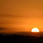 Sunset Closeup by Mully410