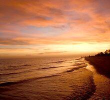 Florida's West Coast by Rosie Brown