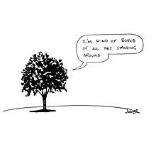 tree talk Photographic Print