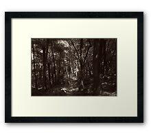 The Beckoning  Framed Print