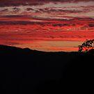 Sunset in Escondido by Heather Friedman