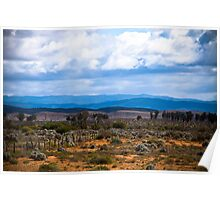 Flinders Ranges - South Australia Poster