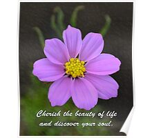 Cherished Beauty, Discovered Soul Poster