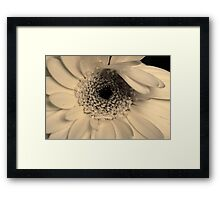 Sorrow is like a precious treasure, shown only to friends Framed Print